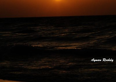 Dark Sunset Sea