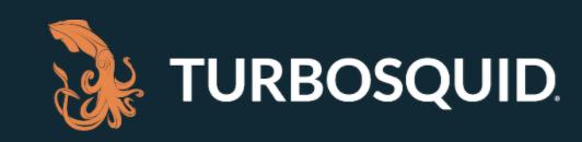 Turbo Squid